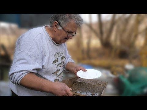 Zlatna groznica trese Bosnu