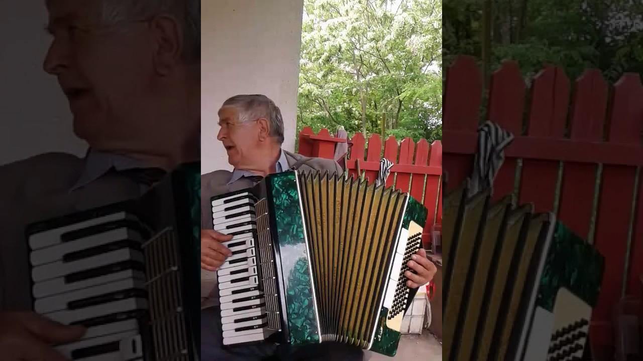 Muzica Acordeon Muzica De Petrecereboteznunta Raileanu Ion 4