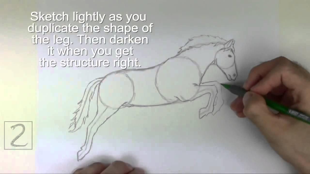 Karakalem Zıplayan At çizimi Youtube