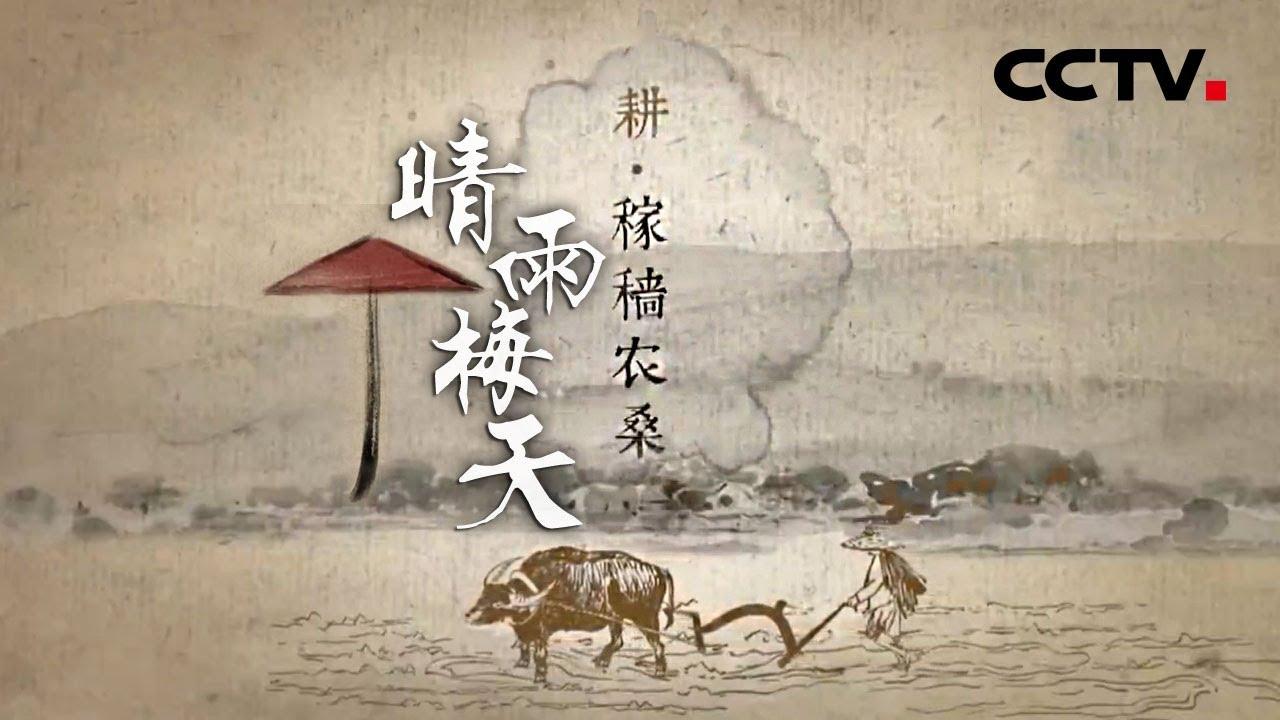《晴雨梅天》第二集 稼穑农桑 | CCTV纪录