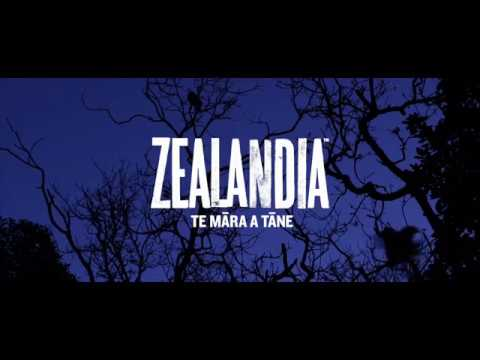 After-Dark Zealandia Wildlife Sanctuary Tour - Video