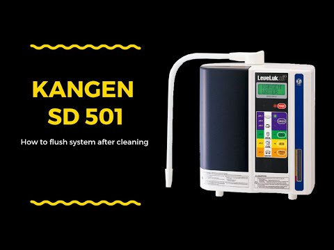 Kangen SD501 Cleaning