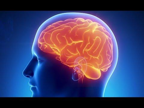 Wenn das Gehirn überfordert ist - Doku 2016 NEU in HD
