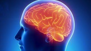 Wenn das Gehirn überfordert ist - Doku 2016 (NEU in HD)