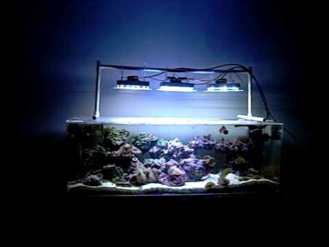 Diy Cree Xpg And Xpe Led Aquarium Light Pt 2 Youtube