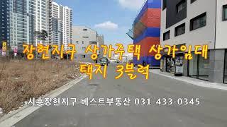 시흥장현지구 상가주택필지 신축상가주택 상가임대