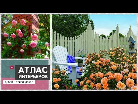 Розарий своими руками на даче. Розы в ландшафте: дизайн двора. Идеи для дачи и сада