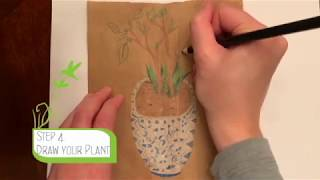 Whimsical Potted Plant Drawing Activity
