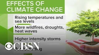 What you need to know about climate change