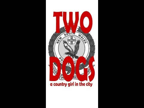 Two Dogs - a country girl in the city
