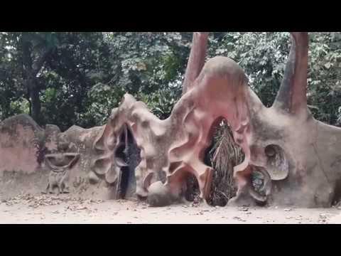 Explore Osun Osogbo Sacred Grove (Secret view)