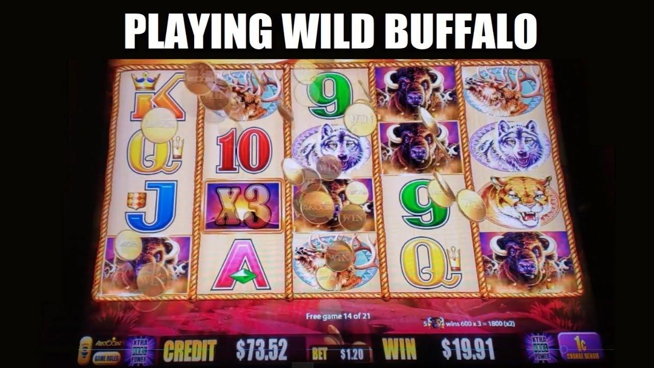 Wild Buffalo Slot