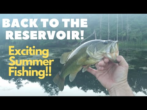 Exciting Summer Fishing At A Hidden Reservoir!