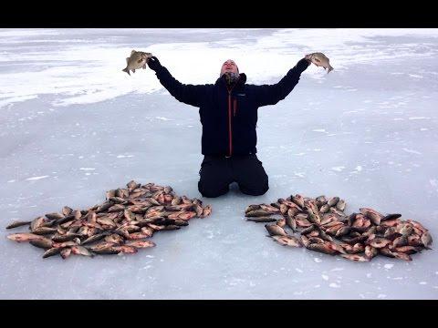 Best Fish of 2014 - Vermont