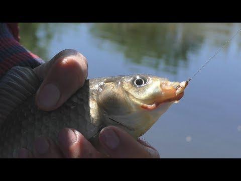 Как собрать снасть на удочку со скользящим поплавком на рыбалке