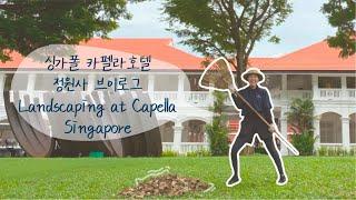 싱가폴 카펠라호텔 프론트직원의 3일간 정원사 체험기 |…