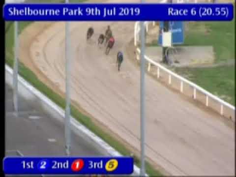 IGB - The Best Car Parks A5  Semi-Final 09/07/2019 Race 6 - Shelbourne Park
