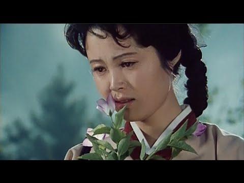 A Broad Bellflower (North Korea)