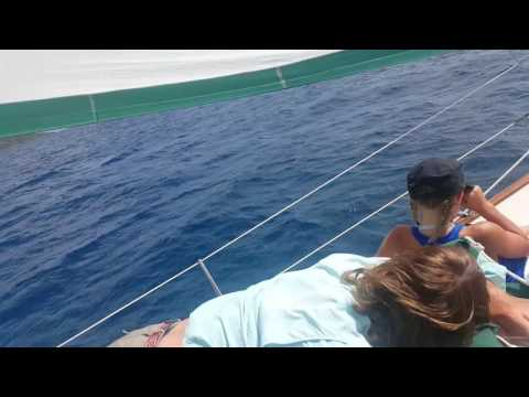 Sailing on the Independence, West Indies (Virgin Islands)