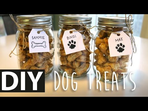 DIY Homemade Peanut Butter Dog Treats | ArtsyPaints