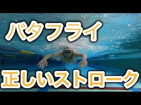 【水泳】【バタフライ】正しいストローク位置。進むようになります。