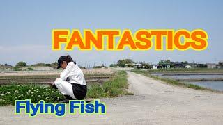 FANTASTICS / Flying Fish 踊ってみました。