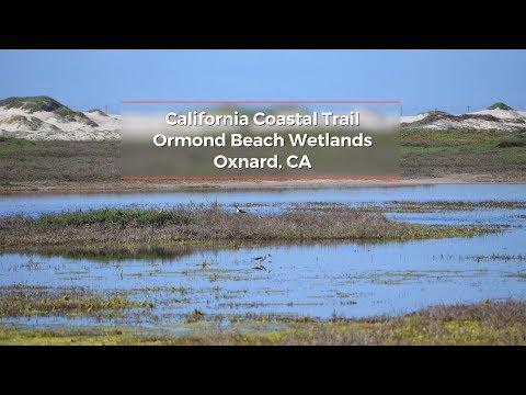 California Coastal Trail: Ormond Beach Wetlands
