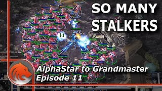 StarCraft 2: 100% PvP Winrate (MASS Blink Stalkers ONLY!)