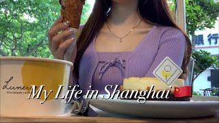 eng) 중국 대학생 브이로그   상해 먹방 모음   …