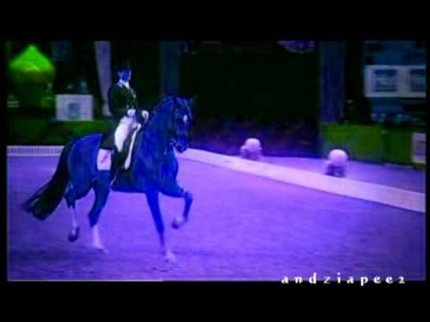Mep Part 8 For Domcia620 Mep Horses ;D
