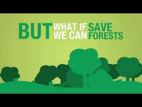 How to Save Trees and Forests?