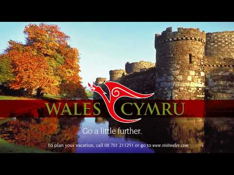 The Red Dragon is the symbol of theWelshkings!