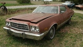 1974 Ford Torino, 2dr, w/ Rebuilt 351 Cleveland, For Sale, $1800, Call 1-864-348-6079
