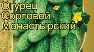 Огурец сортовой Монастырский. Краткий обзор, описание характеристик, где купить семена
