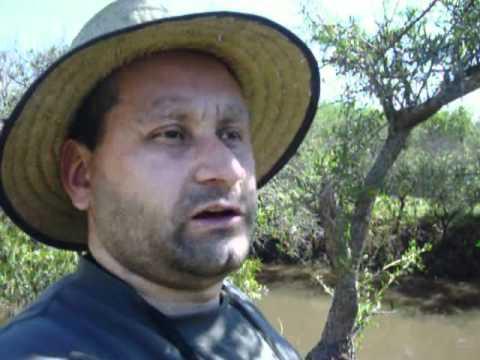 Testimonio del Pack Emprendedor Nevill Carbonier