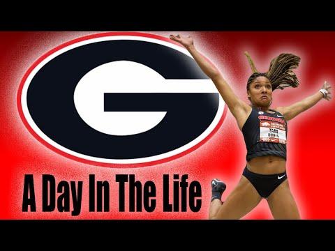 The Life of a Student Athlete *UGA* Tara and Hunter