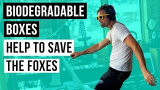 Biodegradable boxes help to save the foxes - 360 Music Video