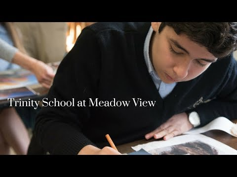 Trinity School at Meadow View