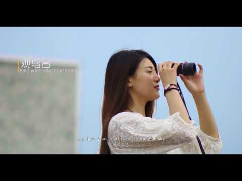 Immagini del video promozionale del Huanghai Forest National Park. 2017