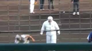 関西独立リーグ 神戸9cruise VS 大阪golden vilicanes '09/5/1 尼崎記...