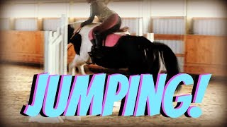 first-time-jumping-our-mare-day-331-11-30-18