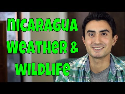 Nicaragua's Climate, Nature and Wildlife