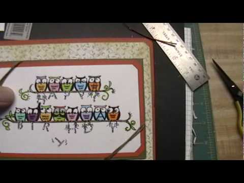 Musical Birthday From Owl of Us