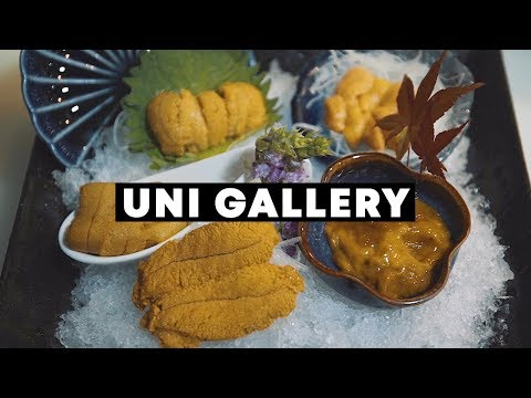 The Only Uni (Sea Urchin) Dedicated Restaurant in Singapore: Uni Gallery