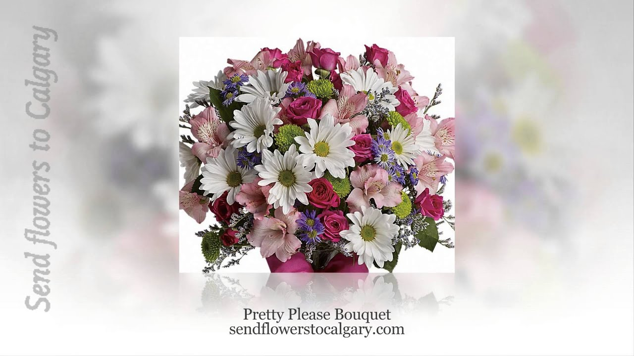 Cheapest flowers to buy youtube cheapest flowers to buy calgary florist izmirmasajfo