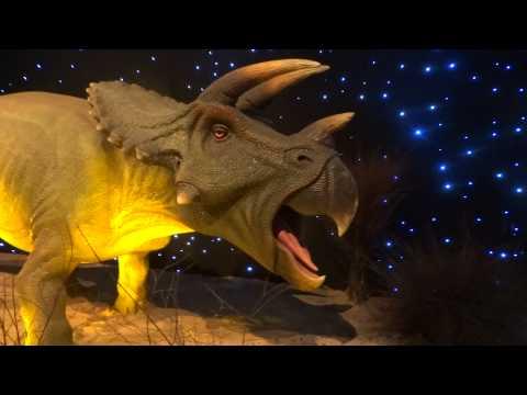 Город Динозавров -2
