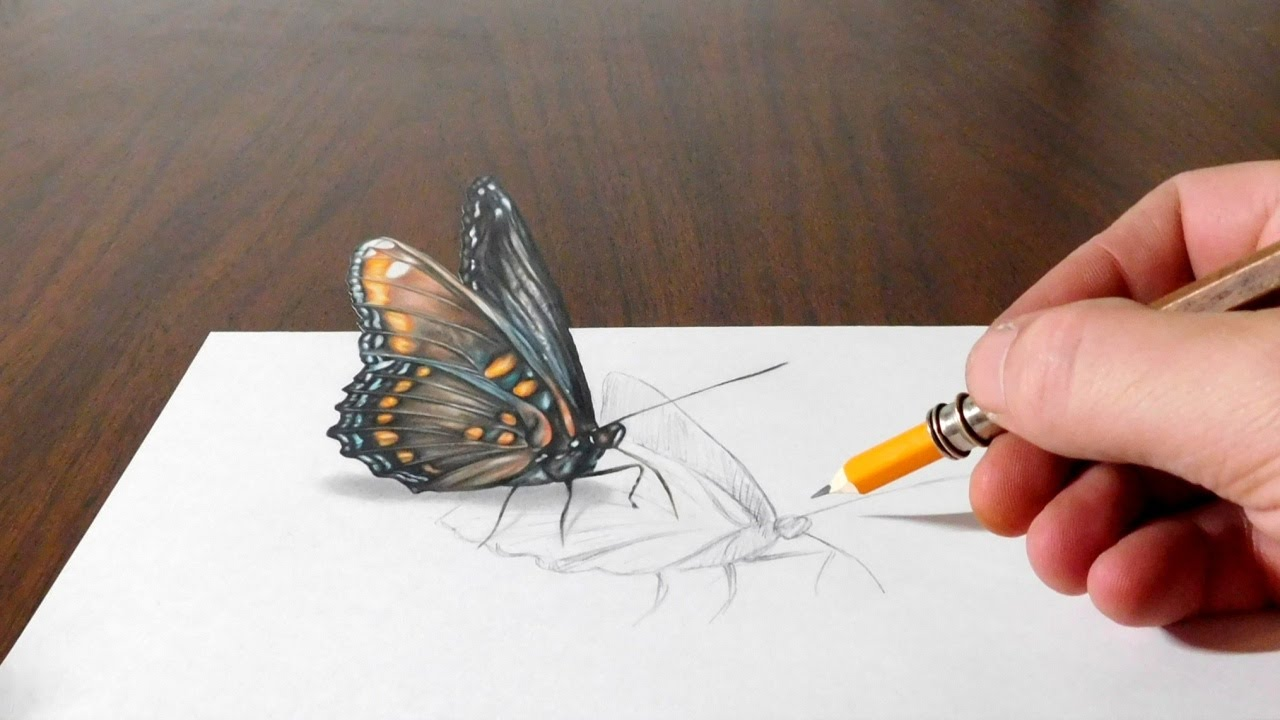 Drawing a butterfly cool 3d trick art on paper