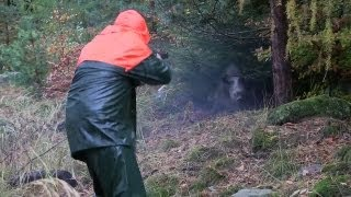 Repeat youtube video The Shooting Show Christmas special - driven wild boar in Bavaria