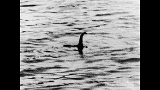 3 Controversial Cryptids Caught on Tape: The Loch Ness Monster, The Mokele Mbembe, and El Chupacabra