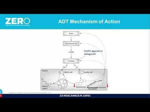 ZERO Webinar: What You Need to Know About ADT